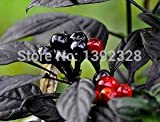 Brand New! 100pcs 100% Organic Black Pearl Pepper Seeds vegetables seeds