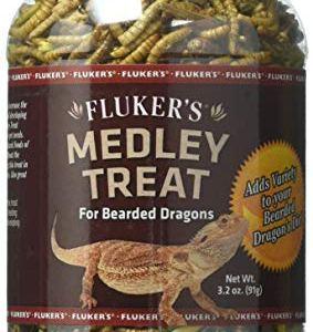 Fluker's 72023 Bearded Dragon Medley Reptile Treat