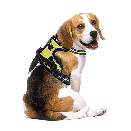 Rabbitgoo No Pull Dog Harness Adjustable Pet Vest Harnesses with Handle, Easy Control Front Walking Harness with 2 Metal Leash Clips, Reflective Dog Vest Comfortable Padded for Large Medium Small Dogs 1