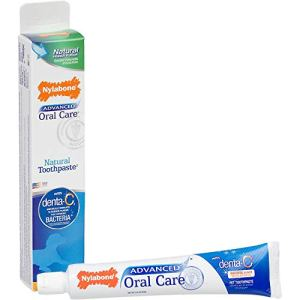 Nylabone Advanced Oral Care Natural Peanut Flavored Dog Toothpaste 2