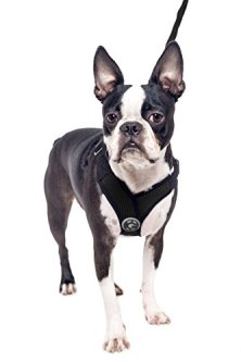 Gooby-Perfect-Fit-X-Harness-Small-Dog-Choke-Free-Step-In-Harness-with-Synthetic-Lambskin-Soft-Strap