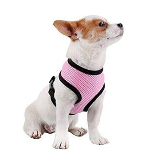 Pet Club No Pull Dog/Cat Harness and Leash Set for Walking, Padded Dog Vest Harnesses for Puppy Small Dogs/Cats, Cat Dog Training Collar Pink,XS,S 1