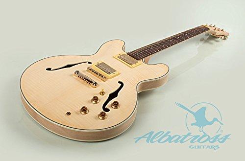 Albatross Guitars GK015 Semi Hollow Body Electric Guitar