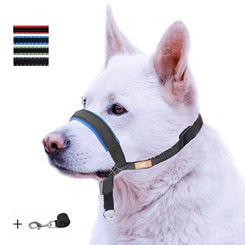 Dog Head Collar with Padded Leather, Head Harness Stops Dog Pulling, Head Leash 1