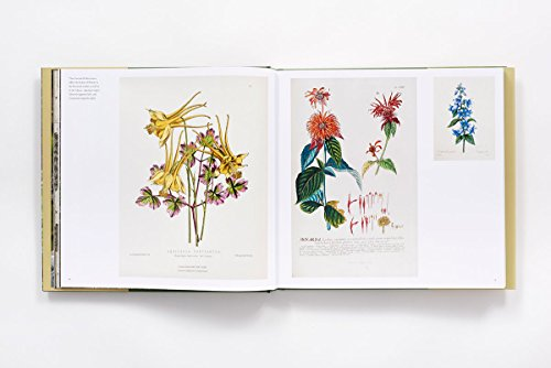 The-New-York-Botanical-Garden-Revised-and-Updated-Edition