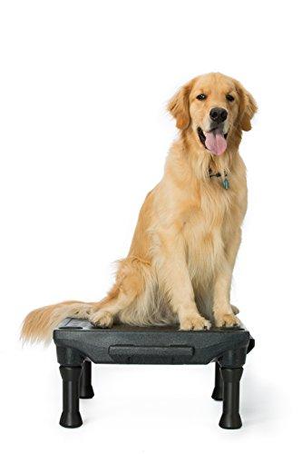 Blue-9 Pet Products The KLIMB Dog Training Platform and Agility System 1