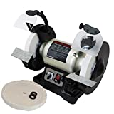 BUCKTOOL Professional Power Tools 8-Inch Dual Speed Cast Iron Base Bench Grinder