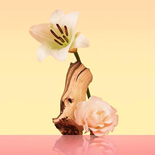 41ou4dsEG3L - Perfume, Calvin Klein Eternity, Spray para mujer, 100 ml de Oferta en Amazon