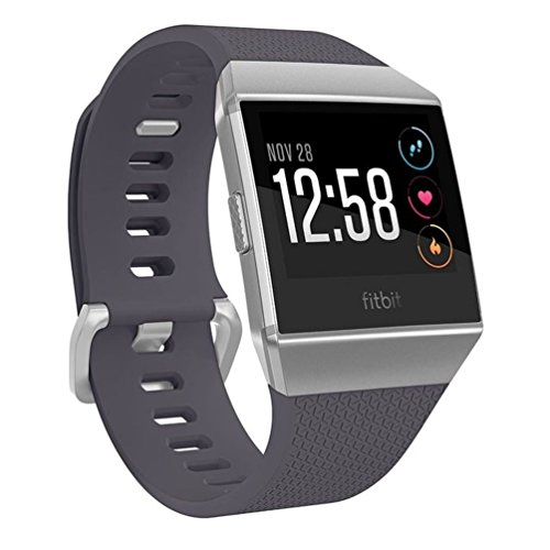 Fitbit Ionic GPS Smart Watch, Blue-Gray/Silver, One Size (S & L Bands Included)