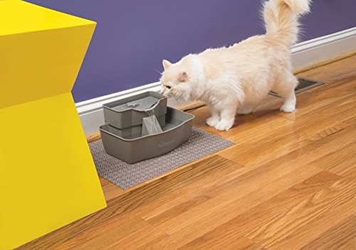 PetSafe-Drinkwell-Multi-Tier-Dog-and-Cat-Water-Fountain100-oz