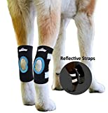 NeoAlly Dog Rear Hock Brace Canine Hind Leg Ankle Support with Safety Reflective Straps for Hind Leg Wounds Heal and Injuries and Sprains from Arthritis (Pair)