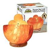 Himalayan Glow 1328 Bowl Salt lamp with Massage Ball