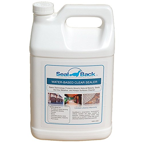 Encore SealBack Clear Acrylic Pool Deck Sealer - 1 Gallon