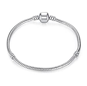 https://www.amazon.co.uk/Bracelet-Pandora-European-Truly-Charming%C2%AE/dp/B00ZCG42EM/ref=sr_1_4?ie=UTF8&qid=1508312131&sr=8-4&keywords=CHARM+BRACELET