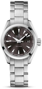 Omega Seamaster Aqua Terra Teak Grey Dial Stainless Steel Watch 23110306006001