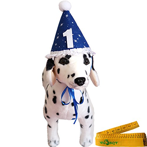 Blue Pet Dog Cat Birthday Holiday Party Hat