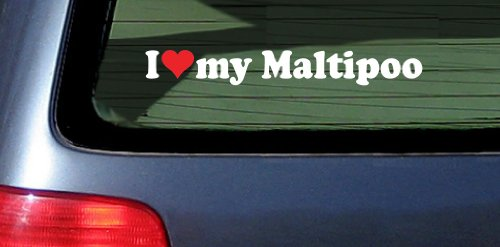 I Love Heart My Maltipoo Dog White Vinyl Decal Sticker