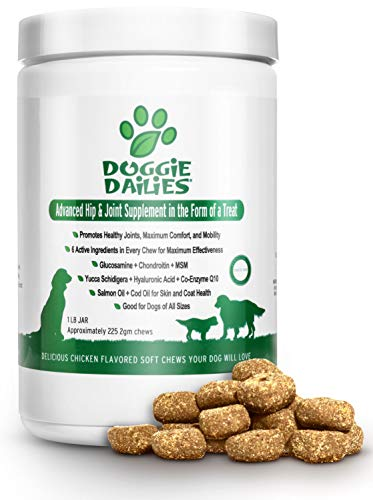 Doggie Dailies Glucosamine for Dogs: 225 Soft Chews, Advanced Hip & Joint Supplement for Dogs with Glucosamine, Chondroitin, MSM, Hyaluronic Acid & CoQ10, Premium Joint Relief for Dogs Made in the USA 1