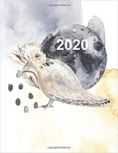 2020 Artist's Productivity Planner with Barn Owl Cover