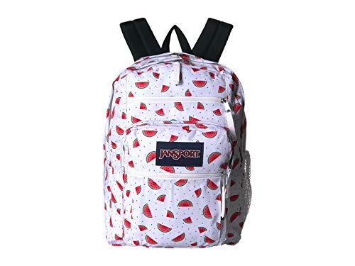 JanSport Big Student Backpack - Watermelon Rain - Oversized