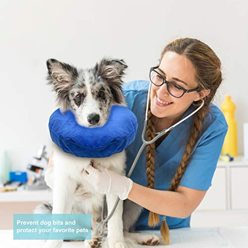 Laboratory 29 Inflatable Dog Collar, Comfy Cone for Dogs, Dog Recovery Collar, Soft Dog Cone, Dog Cone for Dogs and Cats, Washable, Bite and Scratch Resistant (Medium) deal 50% off 41zPgYXZ1eL