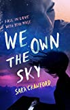 We Own the Sky: An Urban Fantasy Musician Romance (The Muse Chronicles Book 1)