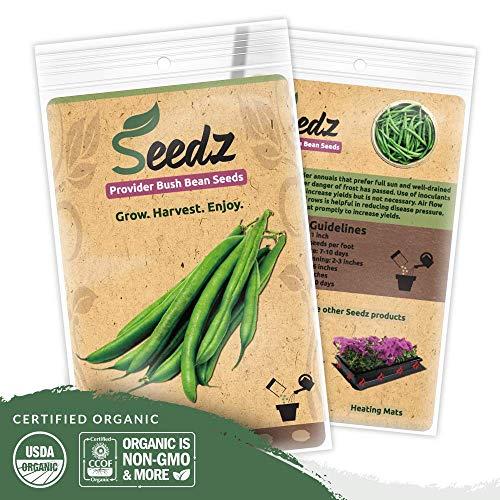 Organic Green Bean Seeds (APPR. 125) Green Bean - Heirloom Vegetable Seeds - Certified Organic, Non-GMO, Non Hybrid - USA