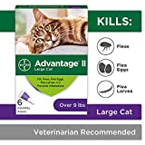 Flea Prevention for Cats Over 9 lbs, 6 Pack, Advantage II