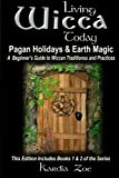Living Wicca Today Pagan Holidays & Earth Magic: A Beginner's Guide to Traditions and Practices