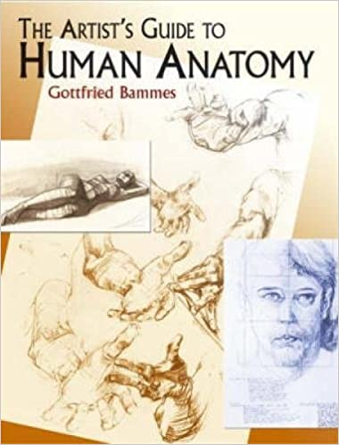 BAMMES HUMAN ANATOMY PDF