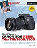 David Busch's Canon EOS Rebel T6s/T6i/760D/750D Guide to Digital SLR Photography (The David Busch Camera Guide Series)