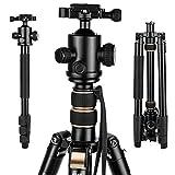 GWNNSH 66'' DSLR Tripod for Camera, 360 Camera tripod Ball Head, Compact Travel Tripod  Monopod with Level, Nikon Canon Sony Tripod stand
