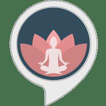 Headspace Meditation App