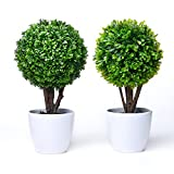 chic2click 2X Round Artificial Faux Potted Home...