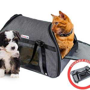 DreamyPup Best Soft Pet Carrier for Small Dogs and Cats – TSA Airline Approved – Expandable Bag w/Breathable Mesh Windows – Soft Dual-Sided Entry – Spacious Comfortable Travel