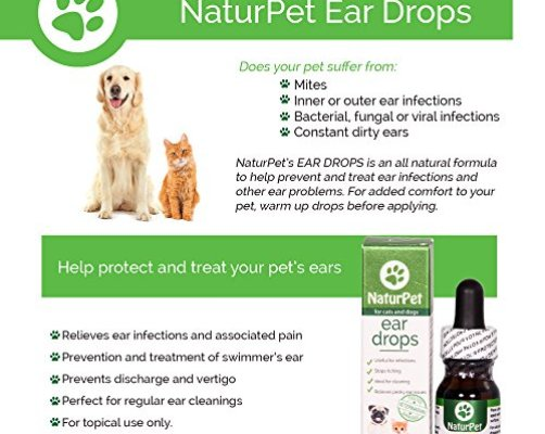 Natural Medicine For Dog Ear Infection