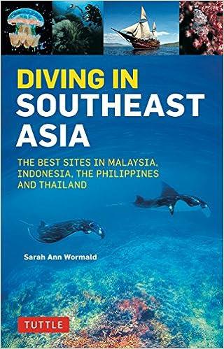 Best Diving Spots In Indonesia Memugaa