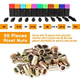 16'Hand Rivet Nut Tool, Professional Rivet Nut Setter Kit with 11PCS Metric & Inch Mandrels,55PCS Rivet Nuts