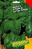 Pagano 1393 Basil (Basilico) Lettuce Leaf Seed Packet