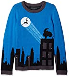 Product review for Blizzard Bay Big Boys' Cityscape Light-up Reindeer Sweater