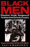 Black Men, Obsolete, Single, Dangerous?: The Afrikan American Family in Transition