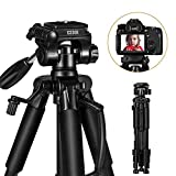 Carbon Fiber Tripod - ESDDI 78 inches/198cm Camera Tripod with Monopod 360 Degree Ball Head,1/4' Quick Release Plate, Bag Compatible for DSLR Camera,Video Camcorder,Load up to 26.5 pounds/12 kilograms
