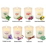 Y YUEGANG Scented Candles for Women Candles Set, Natural...
