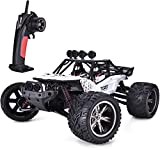 TOZO C2035 RC Cars High Speed 30MPH 1/12 Scale RTR Remote Control Brushed Monster Truck Off Road Car Big Foot RC 2WD Electric Power Buggy W/2.4G Challenger (01WHITE)