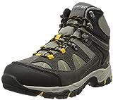 Hi-Tec Men's Altitude Lite I Waterproof Hiking Boot, Charcoal/Warm Grey/Gold,10.5 M US