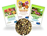 Wildflower Seeds - 8 Gardening eBooks - 87,000 Bulk Annual and Perennial Seed - Open-Pollinated, Non-GMO, No Fillers, Wild Flower Seeds For Fall Planting, Bees, Humming Birds, Butterflies, Pollinators