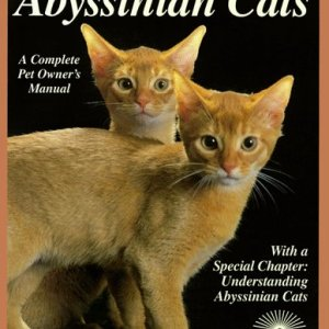 Abyssinian Cats: Everything about Acquisition, Care, Nutrition, Behavior, Health Care, and Breeding (Barron's Complete Pet Owner's Manuals) 16