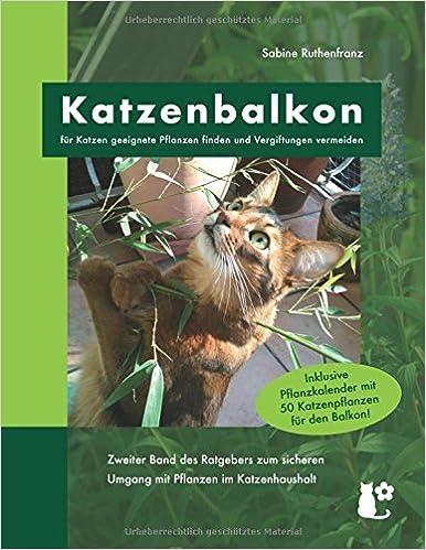 Katzenbalkon Für Katzen Geeignete Pflanzen Finden Und