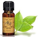 Cassia Pure Essential Oil 100% (China) (Cinnamomum cassia) (Spicy Scent) 100 ml (3 1/3 Fl Oz)-Health