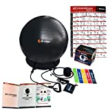 WISEMAX Ball Chair – Exercise Stability Yoga Balance Ball with Inflatable Ring Base, Resistance Bands & Pump, Loop Bands, Carry Bag, Poster for Home, Office, Posture, Gym Bundle- 65cm Black